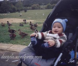 Gabby with those ducks and other feathered creatures at Auckland Botanical Park