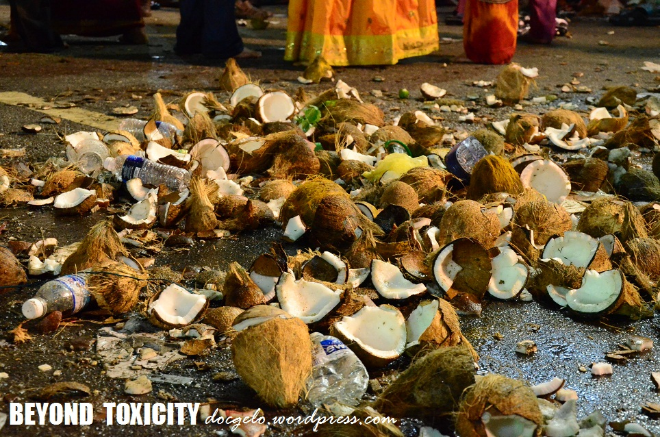They crushed countless coconuts on the ground where the silver chariot of Hindu God, Murugan will pass by. The same scene was noticed in front of their Hindu temple at Thaipusam festival.